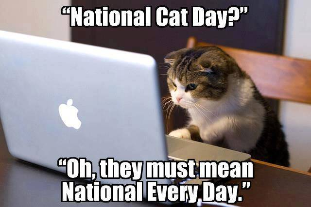 national cat day