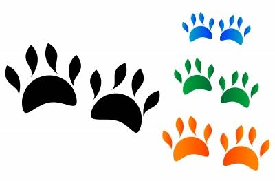 pet loss grief counseling in charlotte