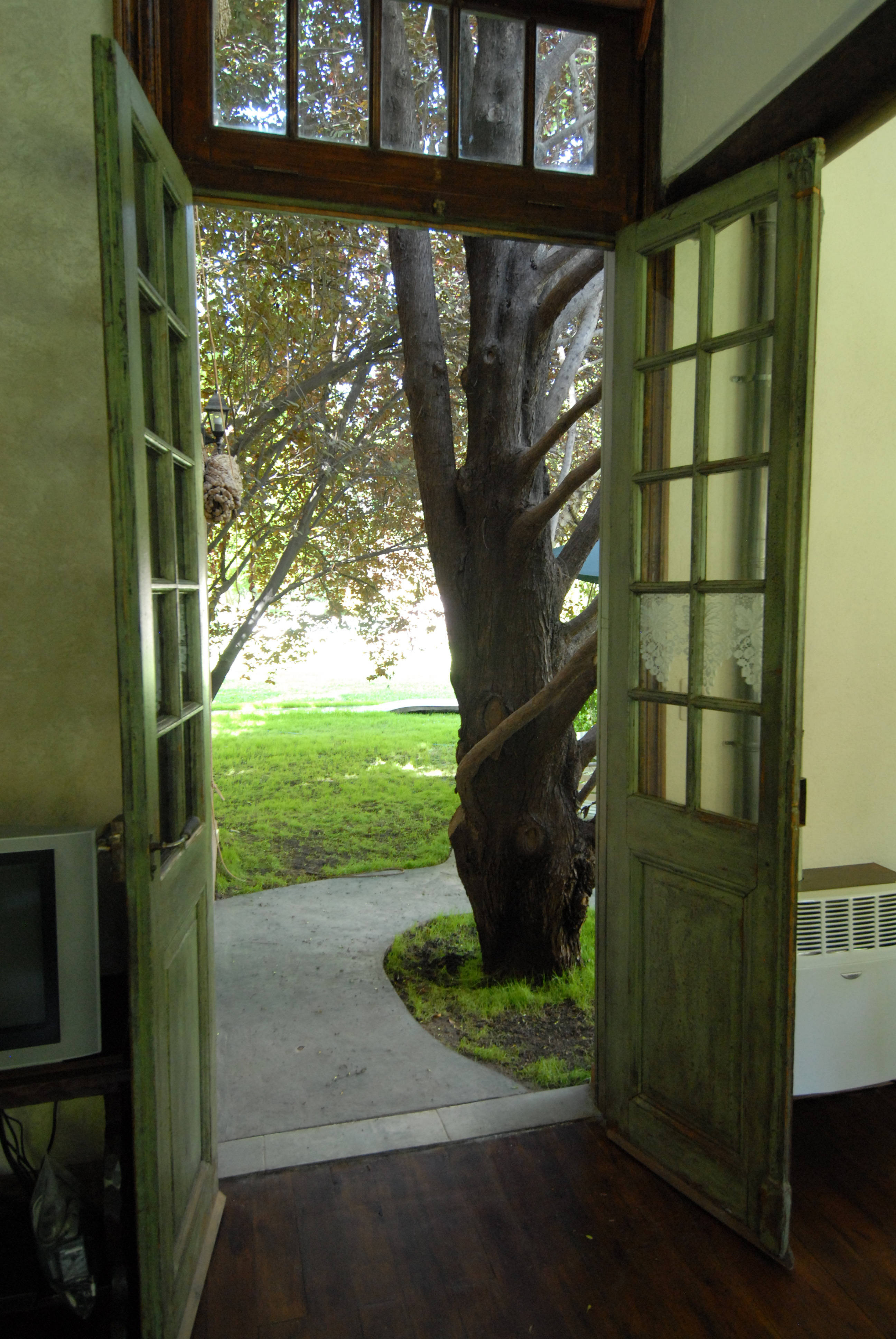 Are you leaving the back door open with your marketing for Back door with window that opens