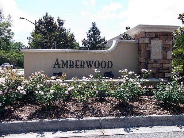 Homes For Sale In Amberwood Fleming Island Fl
