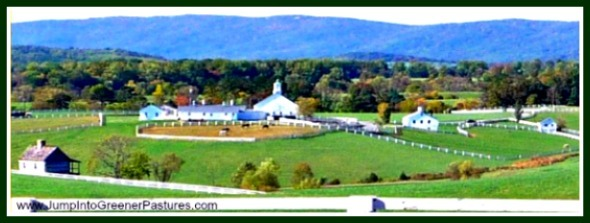 "One look into the equestrian properties for sale here in Charlottesville VA is all it takes for you to find ""home""."