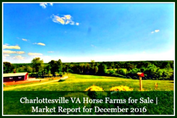 Live in a home surrounded by sprawling greens - choose to live in a Charlotesville equestrian property.