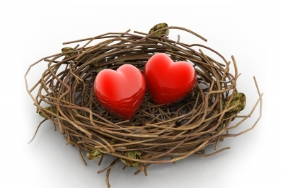 Love nest and heart