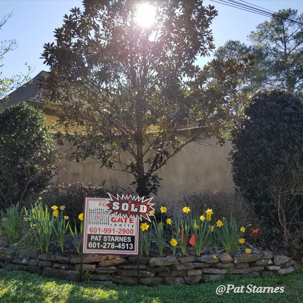Pat Starnes SOLD sign with daffodils