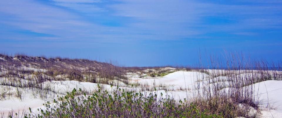 FL Day Trips | Property by Ford Team