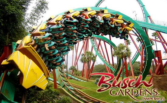 Relocating to tampa florida - How far is busch gardens from orlando ...