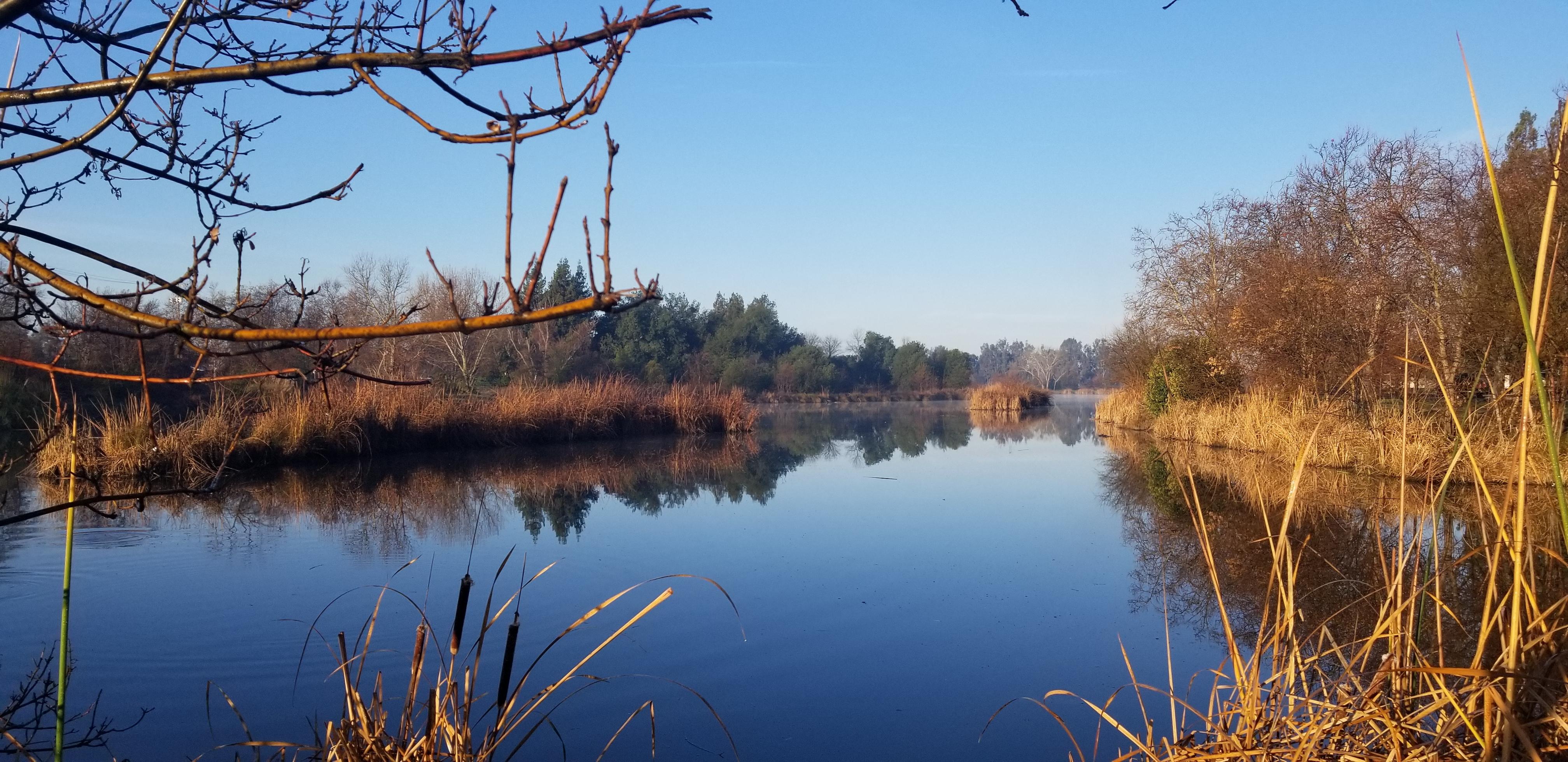 Camden Lake