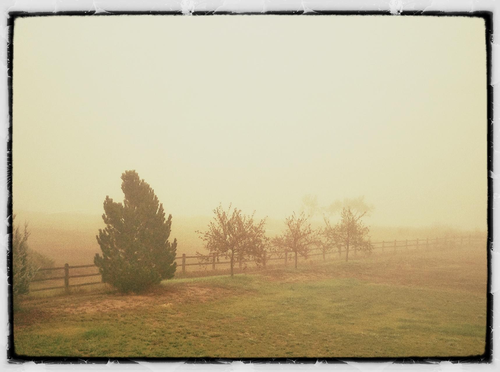 Foggy Morning at Eagle Lake