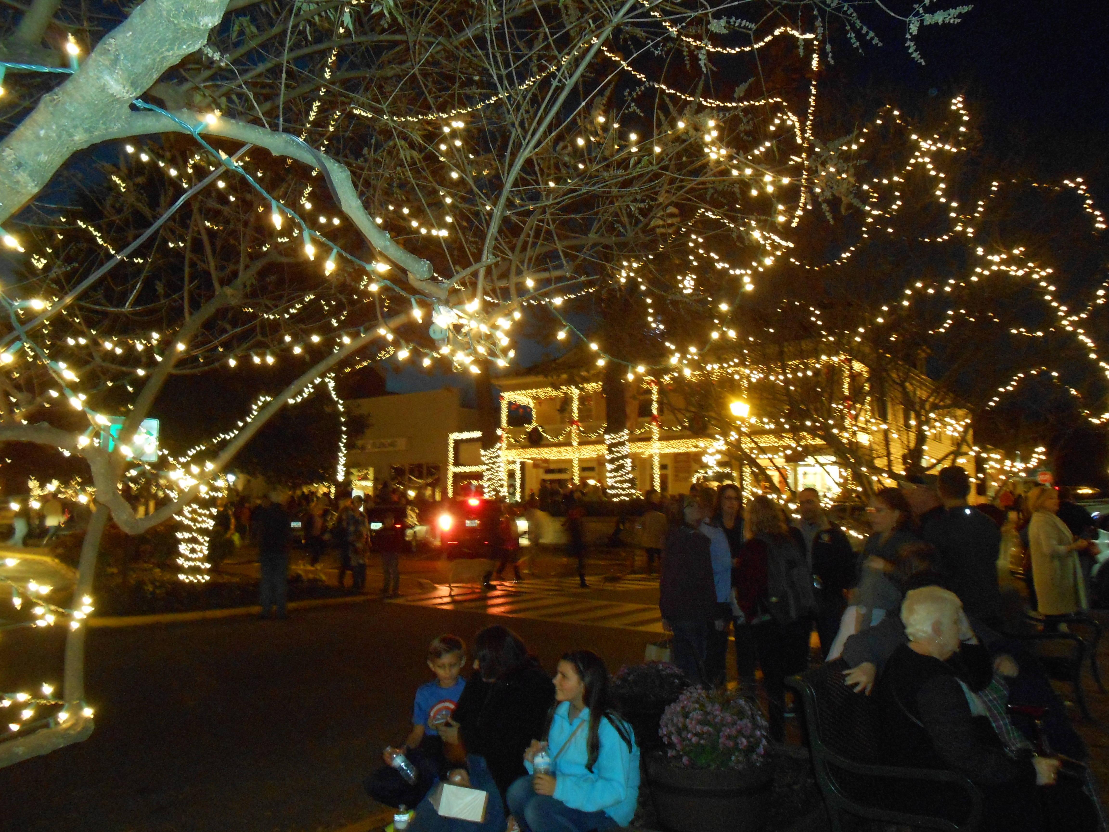 Dahlonega Ga Christmas.Merry Christmas From The North Georgia Mountains