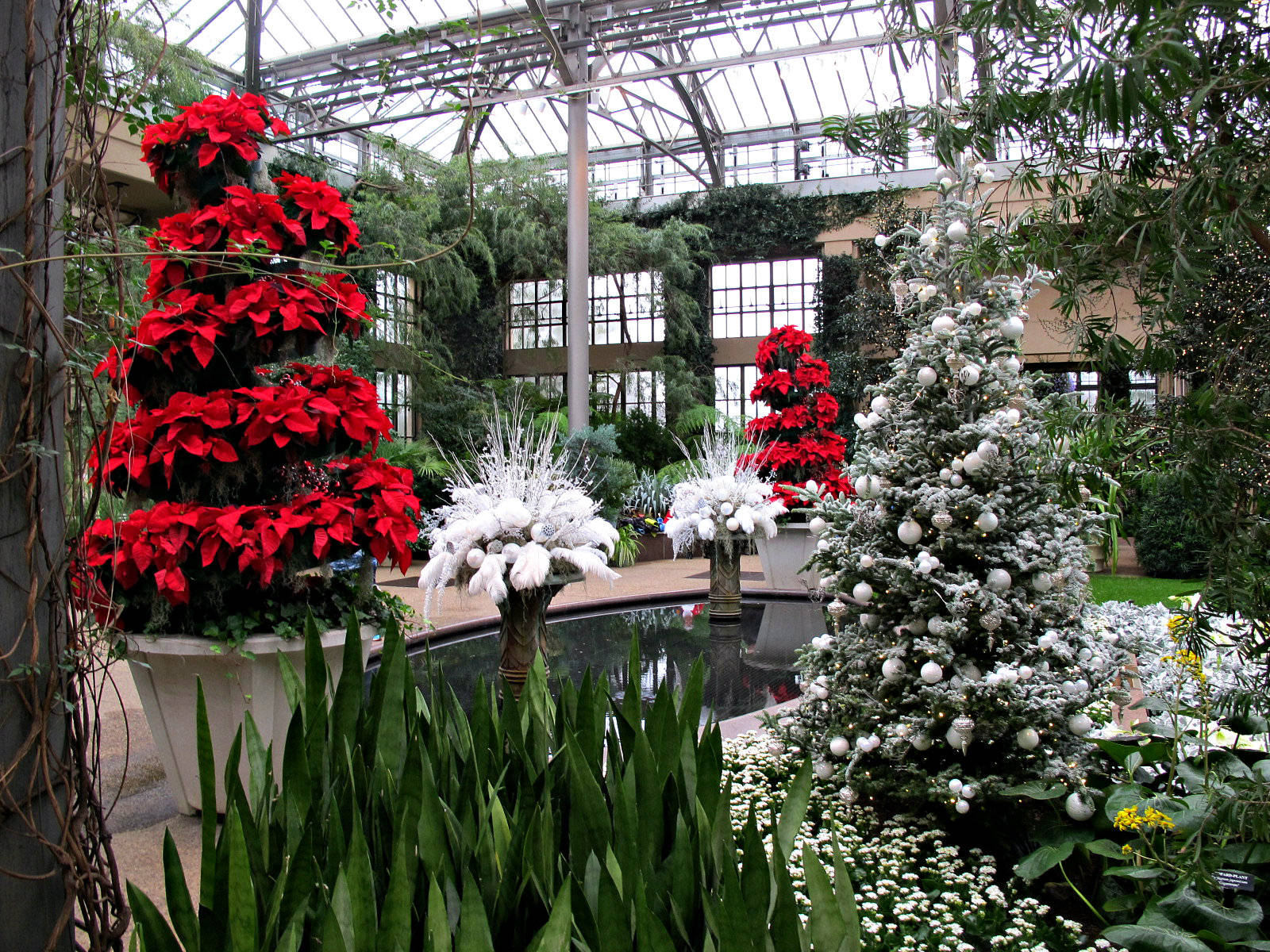 A Longwood Christmas Longwood Gardens Conservatory