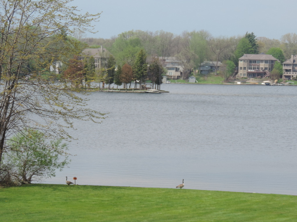 Commerce Lake in Oakland County