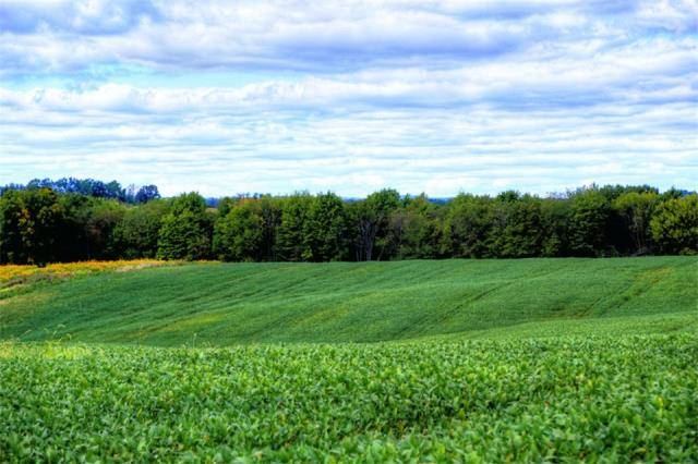 Caves Road and Millersburg Road Acreage For Sale in Knox County Ohio by Sam Miller