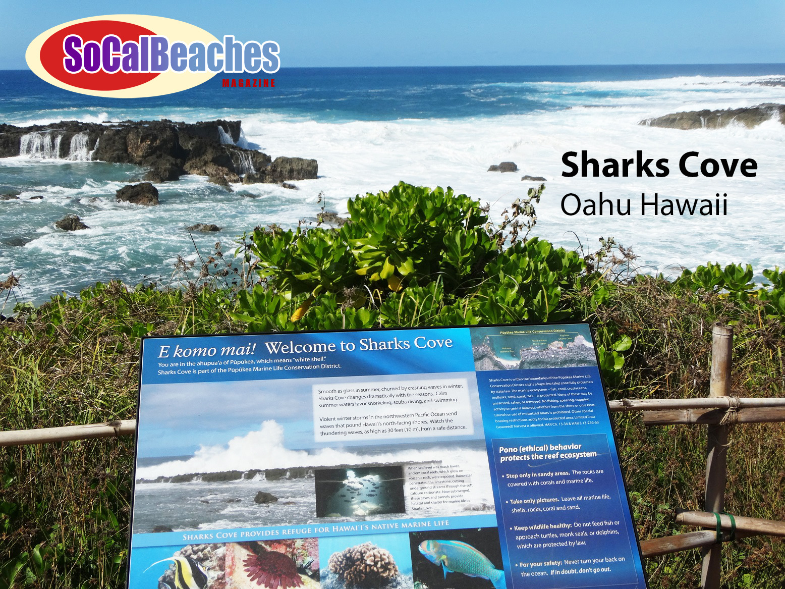 Sharks Cove, North Shore Oahu Hawaii