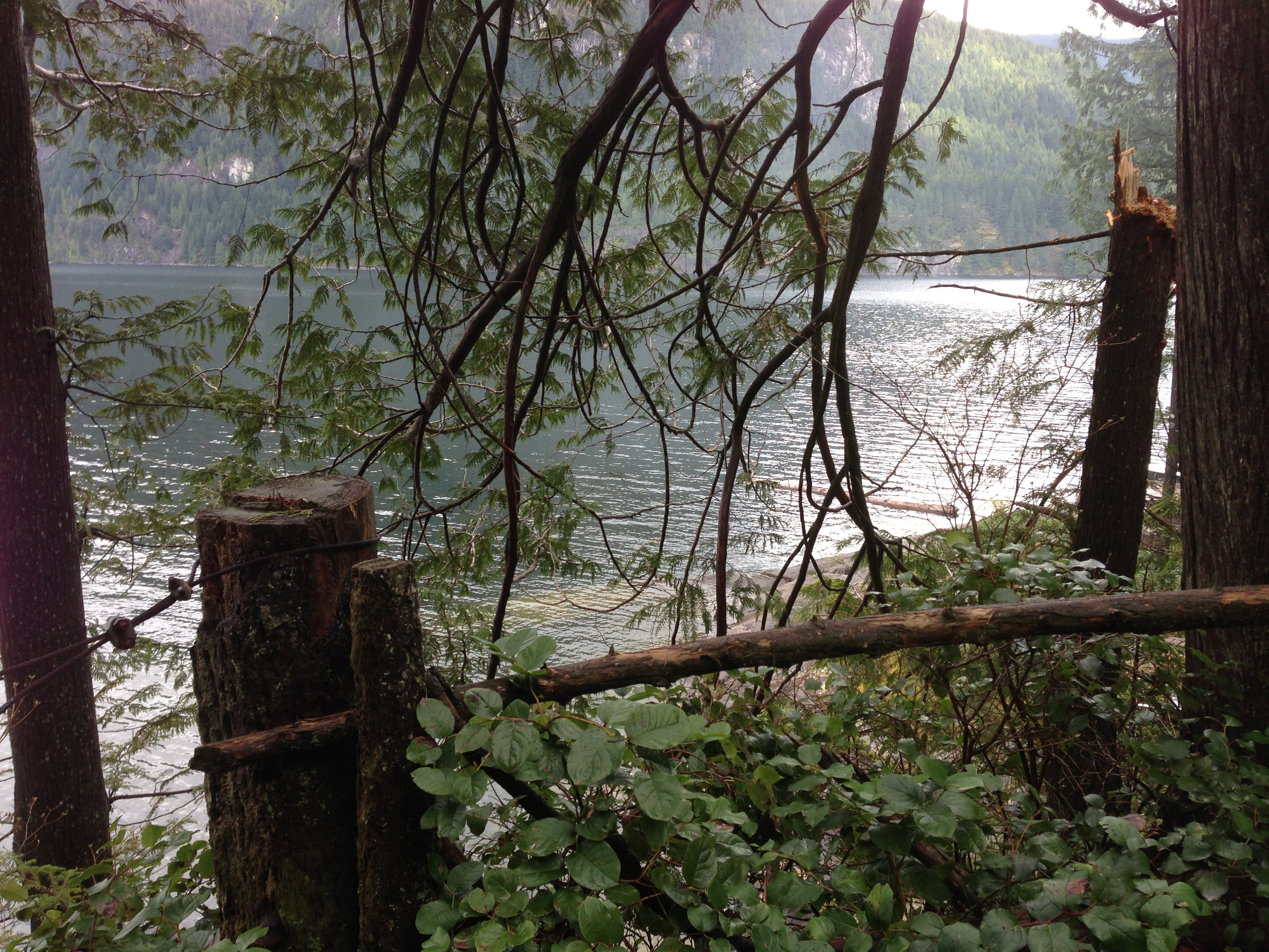 3140 Cozen Point Pitt Lake Waterfront For Sale