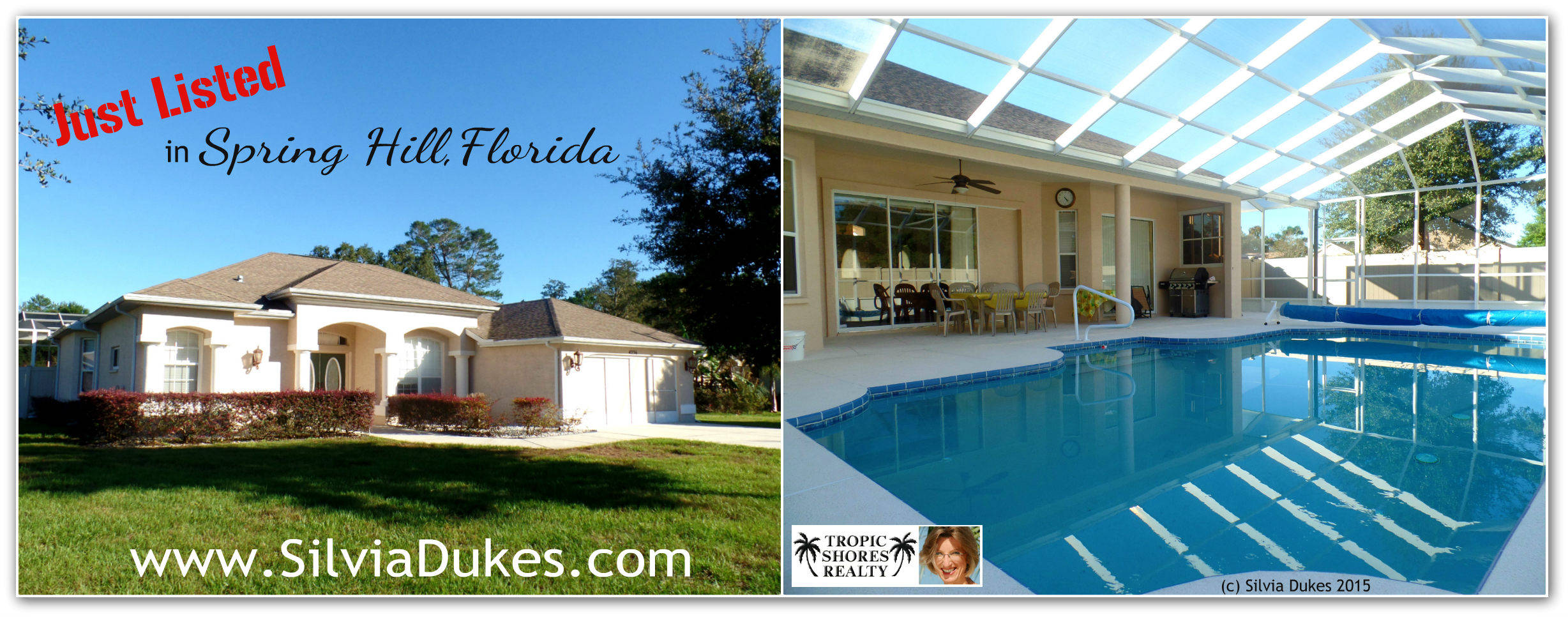 Three Bedroom Pool Home For Sale Spring Hill Fl 34606