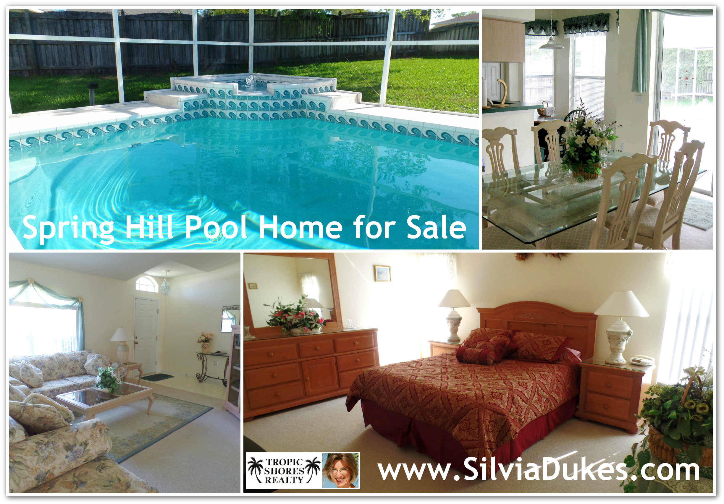 Spring hill florida home for sale with solar heated poo for Heated pools for sale