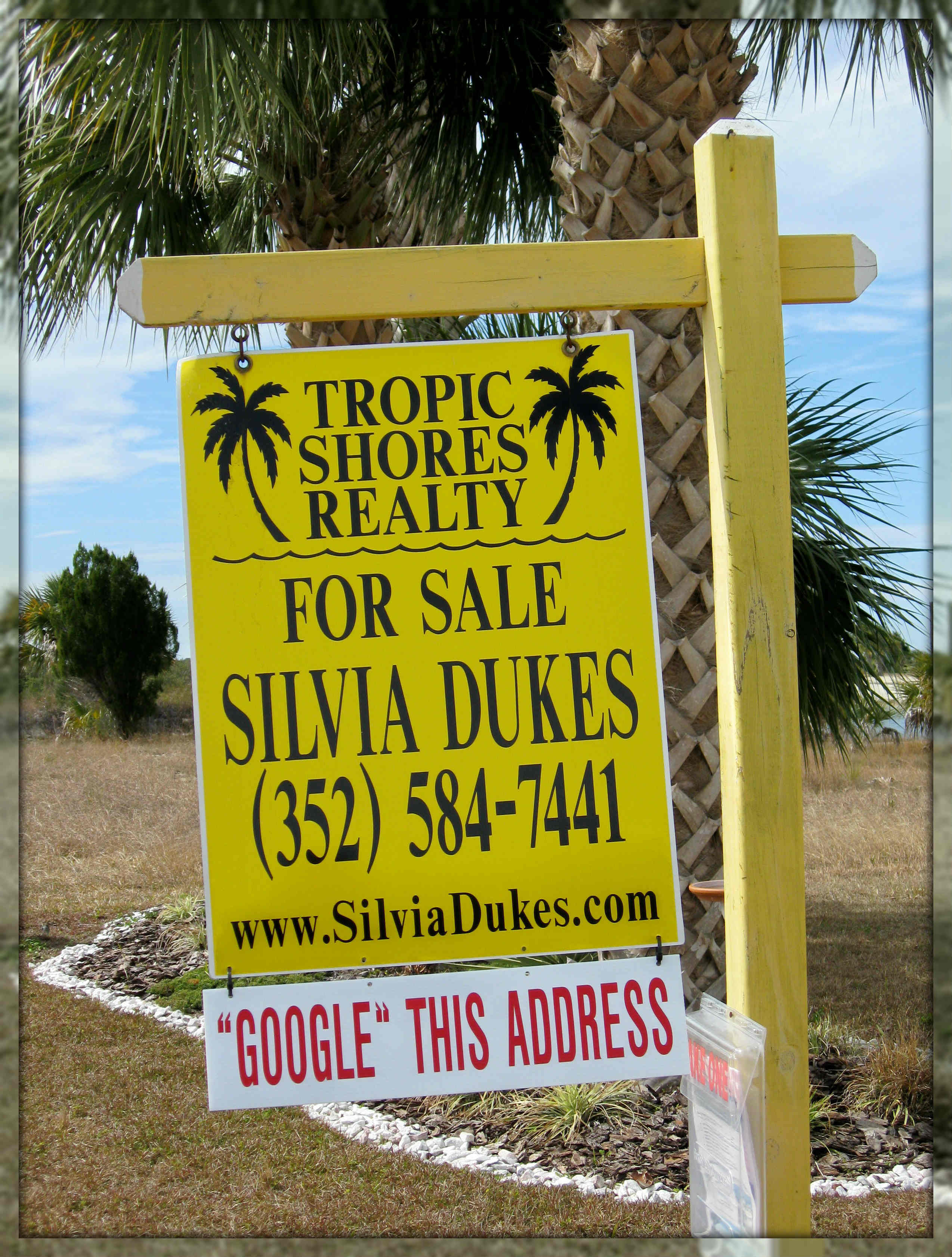 Spring Hill homes for sale by Realtor Silvia Dukes