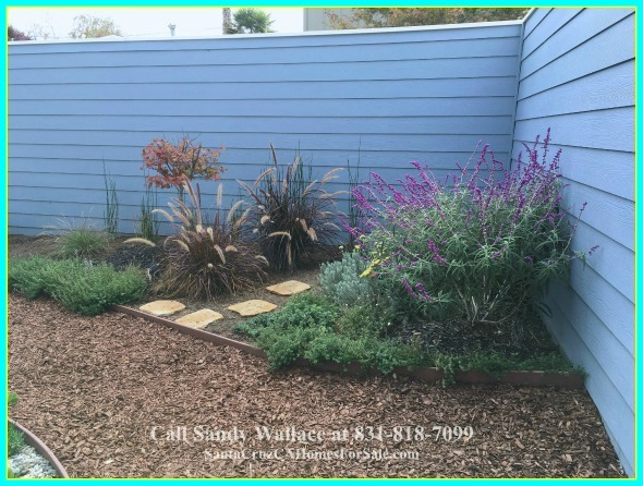 Fill the private backyard of this beach house for sale in Santa Cruz with your favorite flowery shrubs.