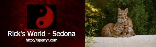 Ricks World Sedona logo