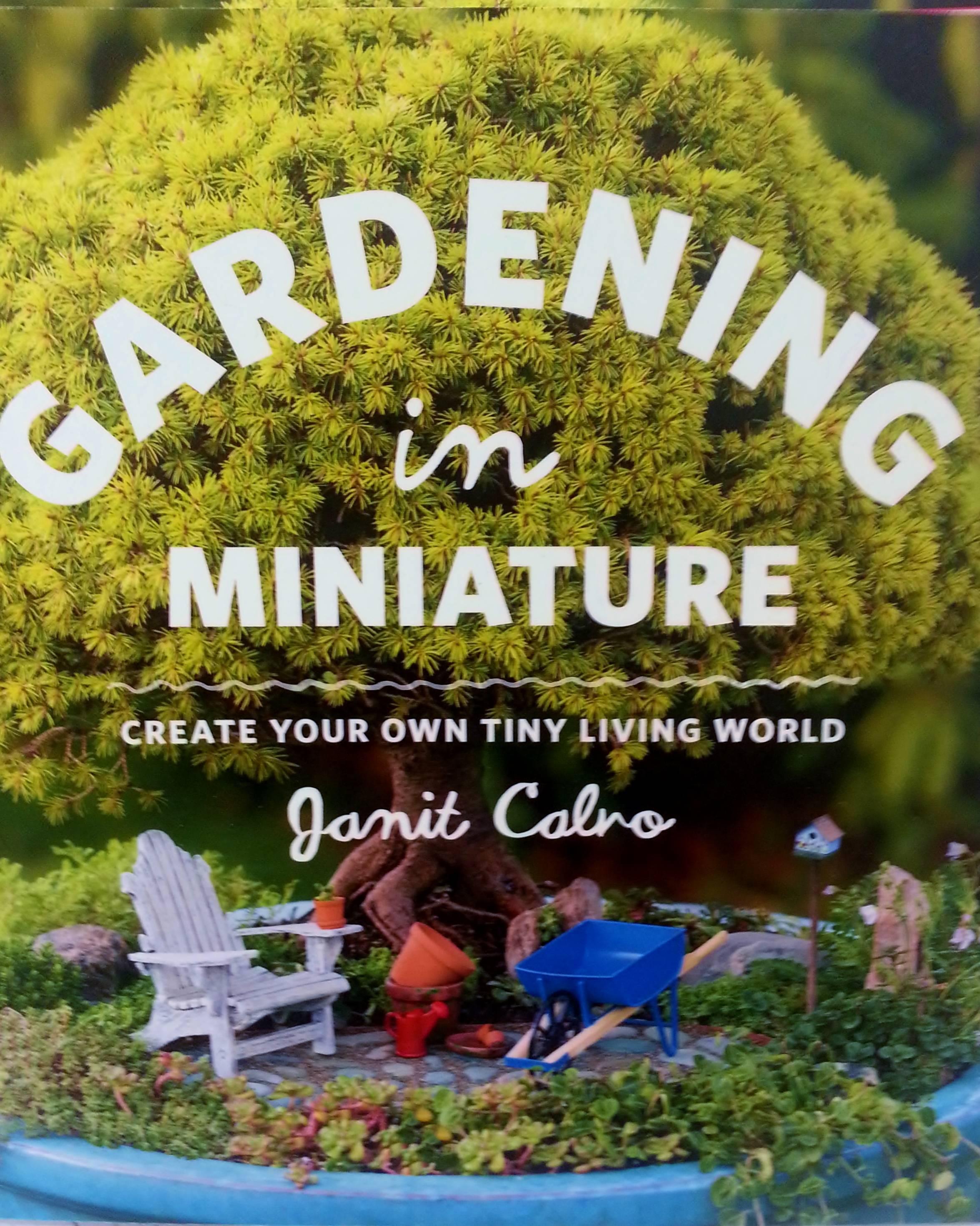 Fairy Garden Ideas For Small Spaces fairy gardens and miniature gardens for small spaces