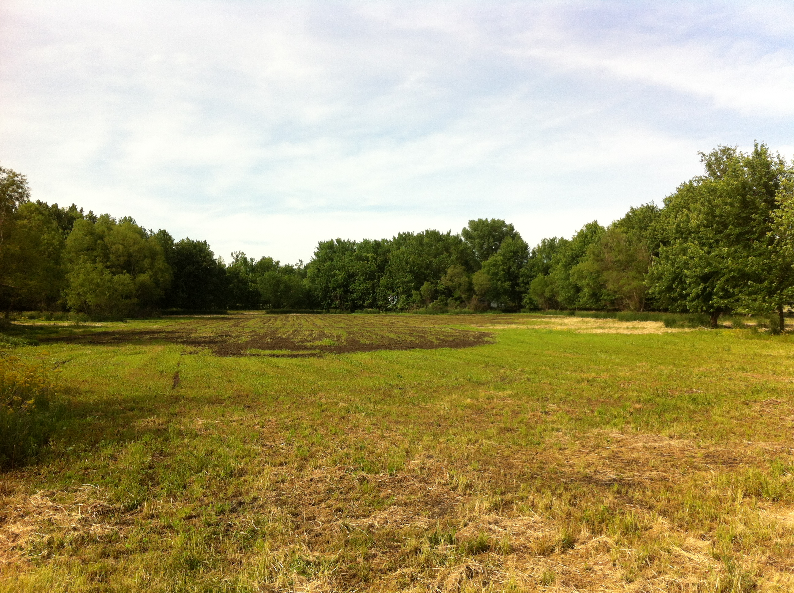 West Lafayette wooded acreage with meadow pasture 20.5 acres minutes to Purdue Research Park Harrison High School
