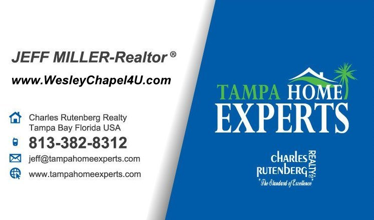 wesley chapel local realtor