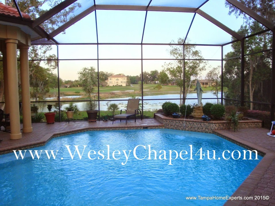 wesley chapel pool home
