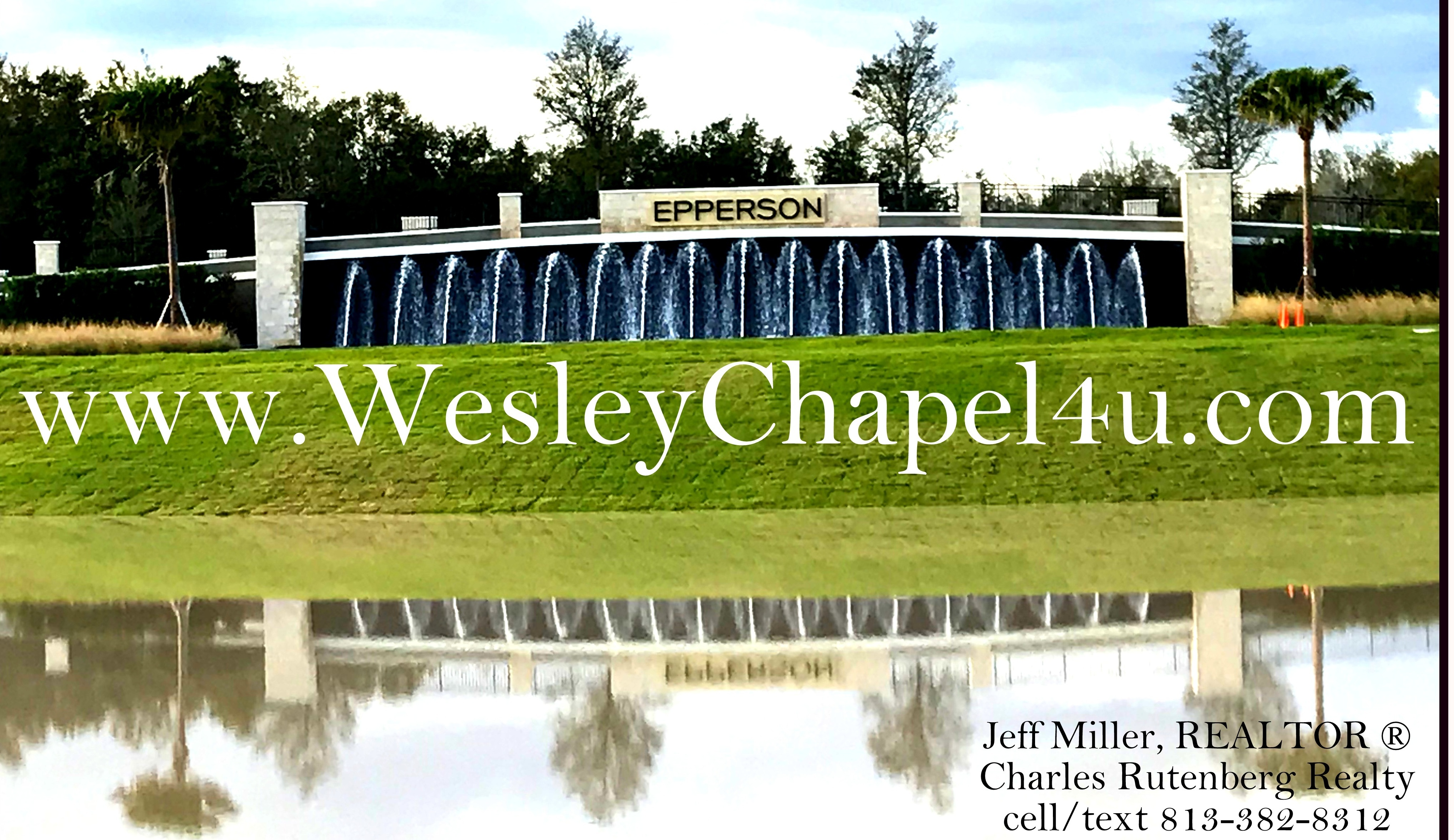 Wesley Chapel Lagoon homes for sale