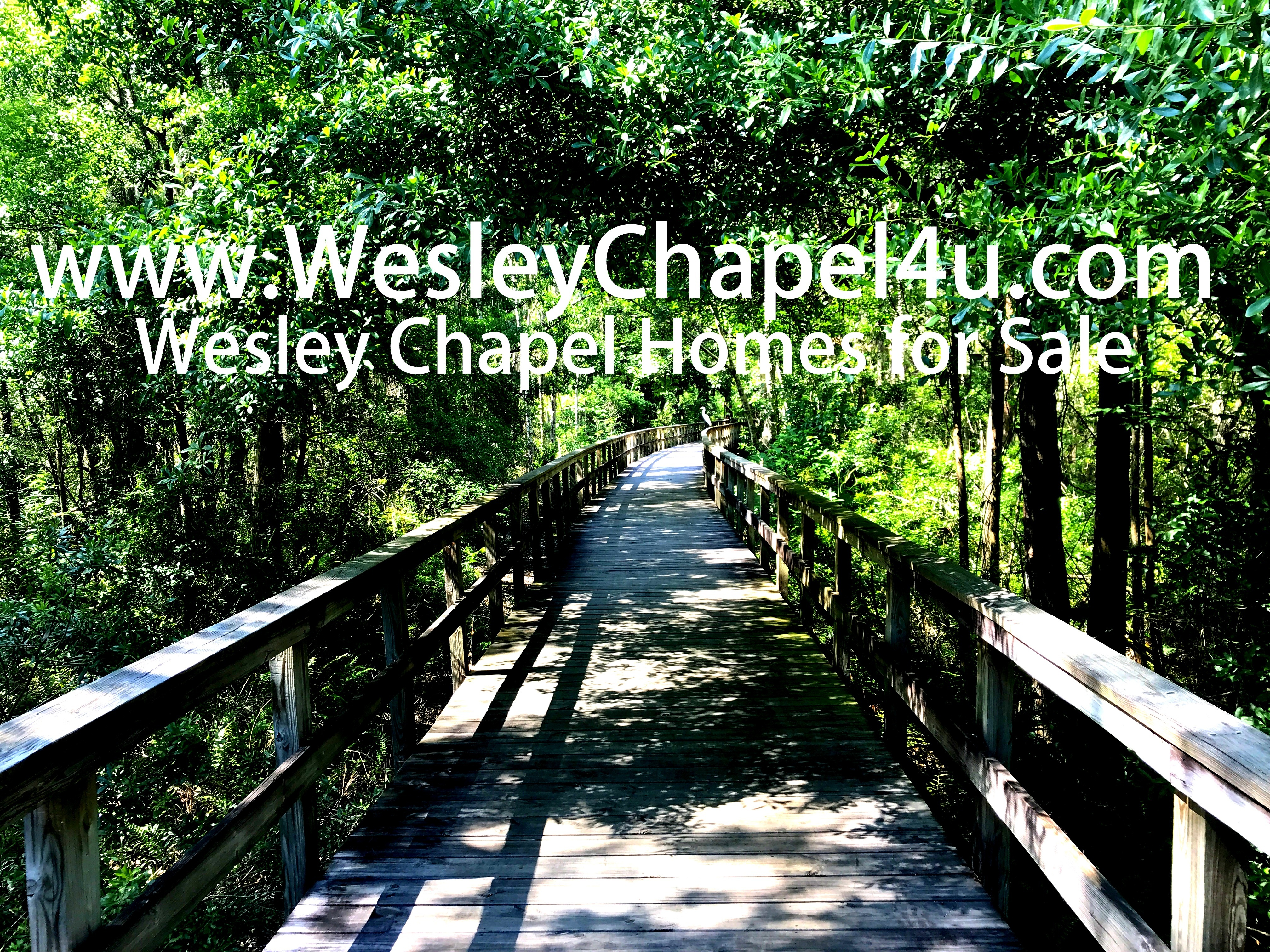Wesley Chapel homes for sale