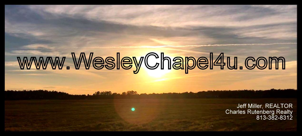 wesley chapel real estate