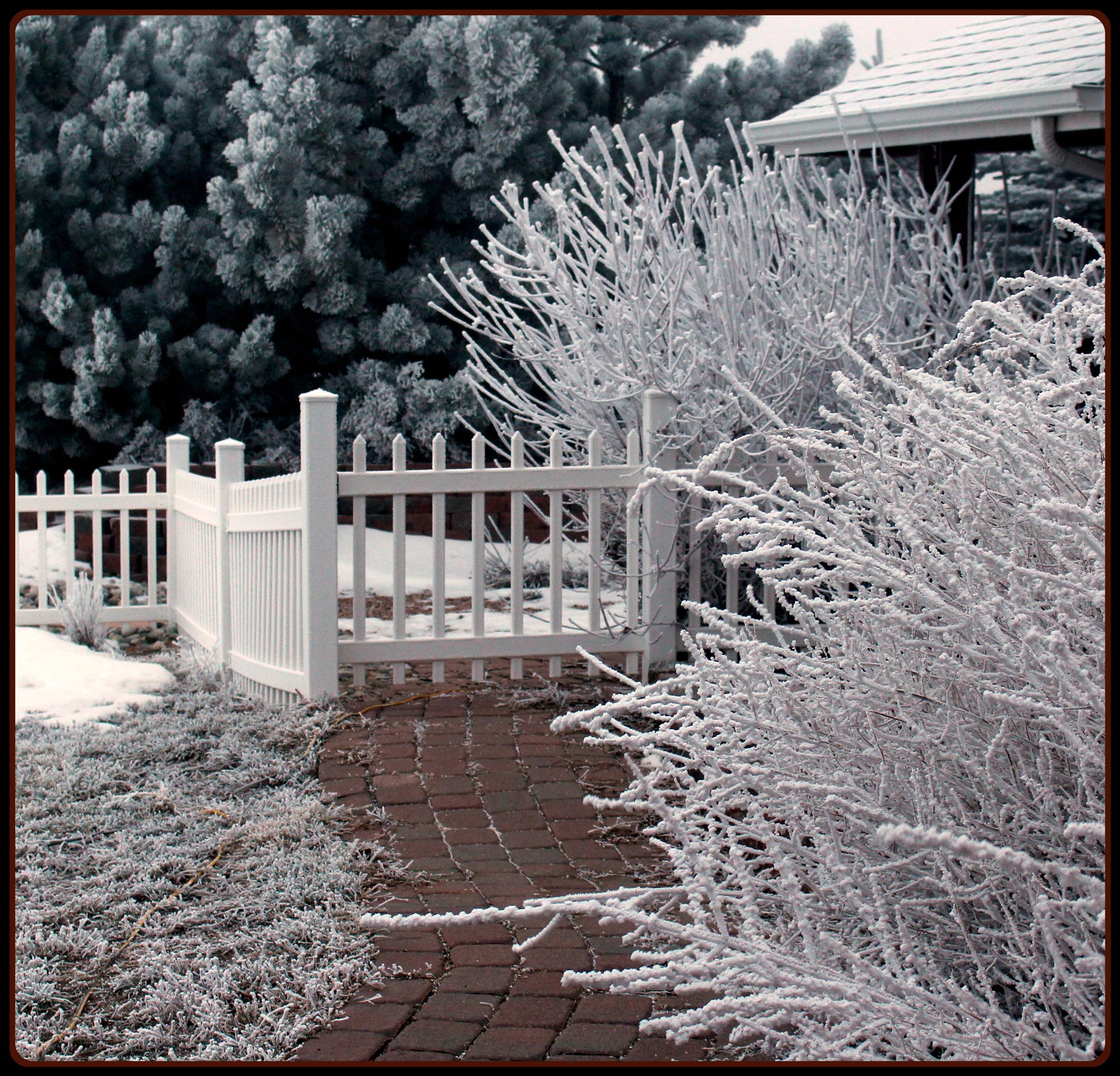 20 Winter Garden Design Ideas: Colorado Winter Landscaping Ideas #1