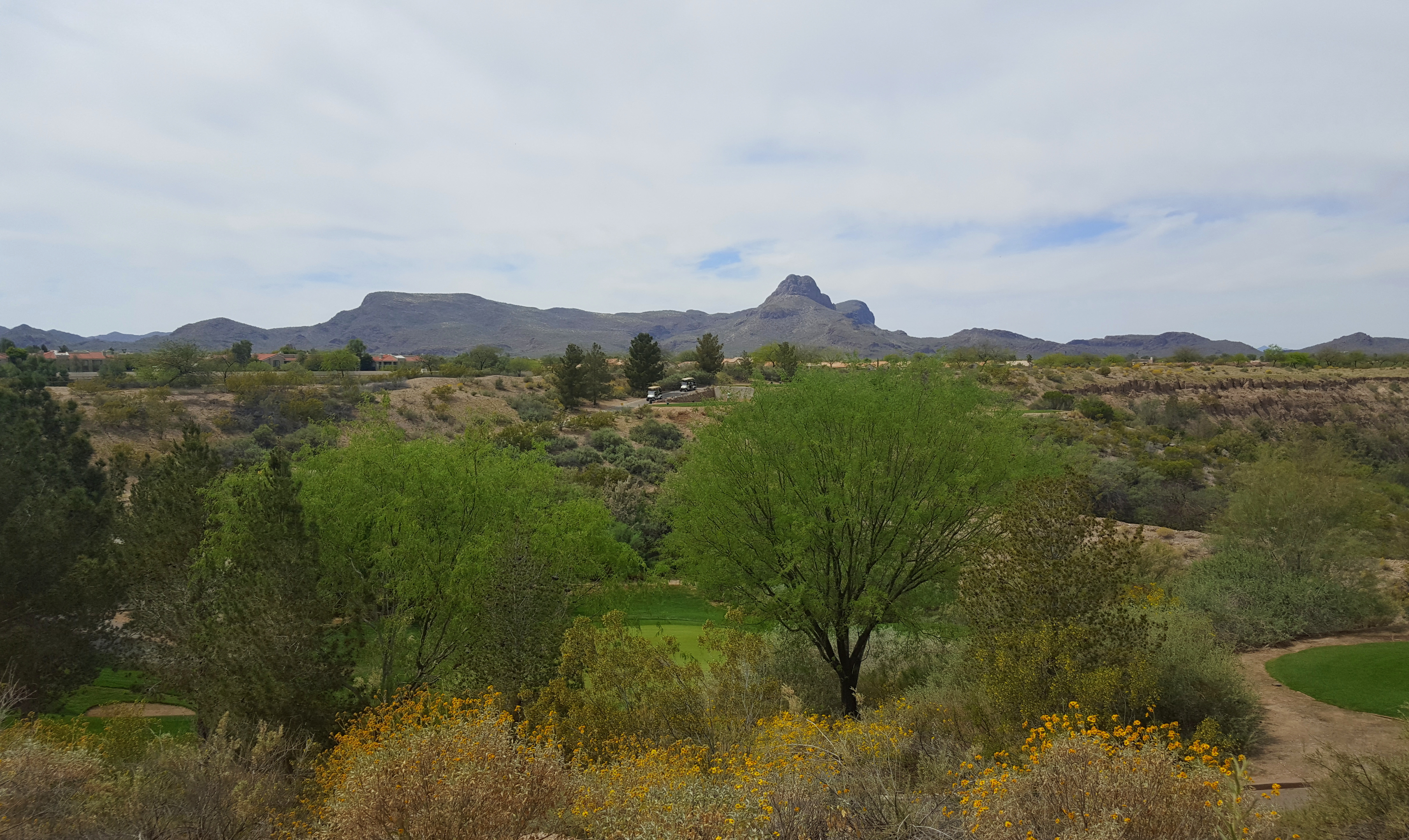 Homes for sale in Tucson and Marana, Oro Valley AZ