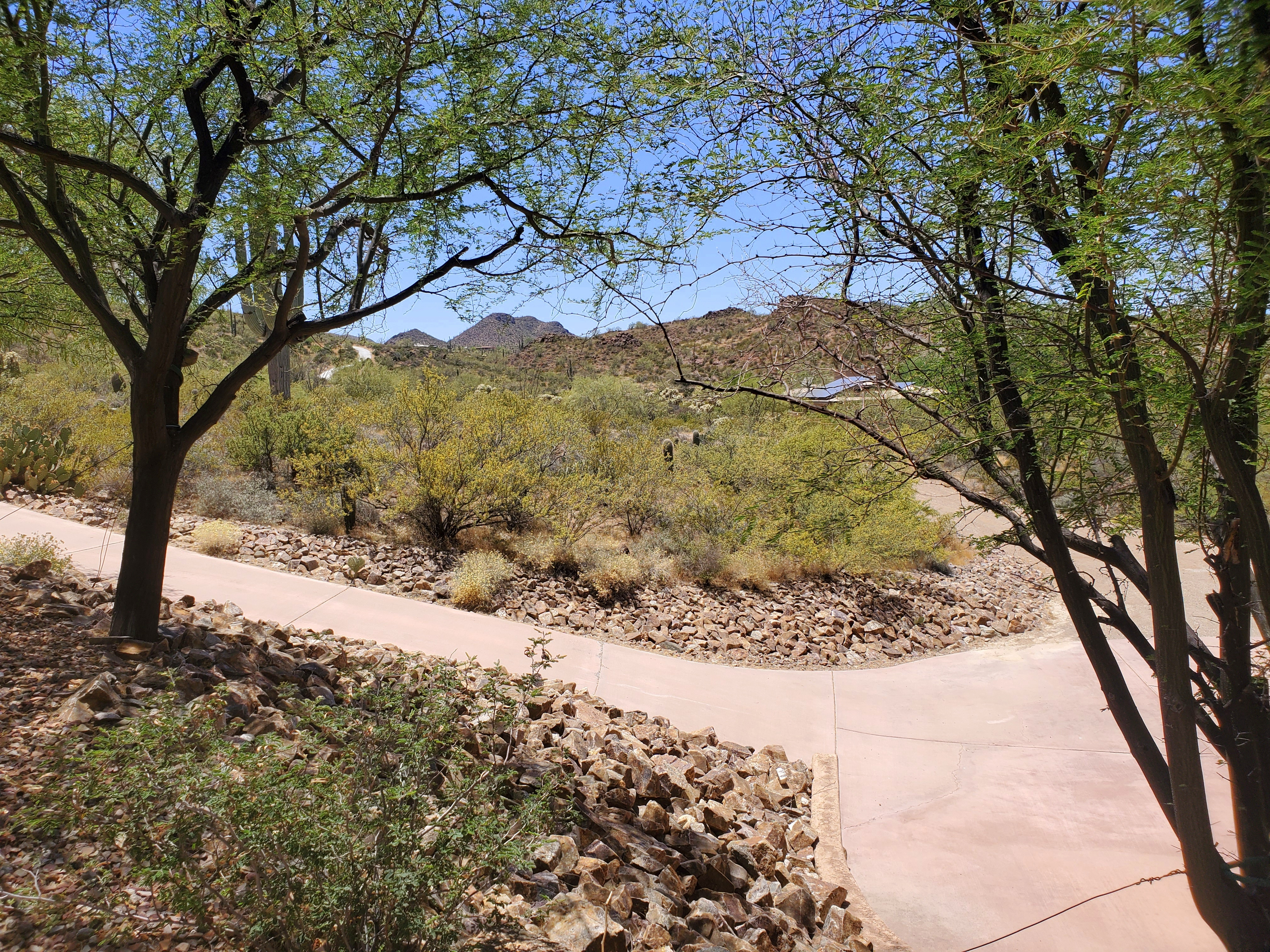 West view mountains horse property for sale in Tucson Marana