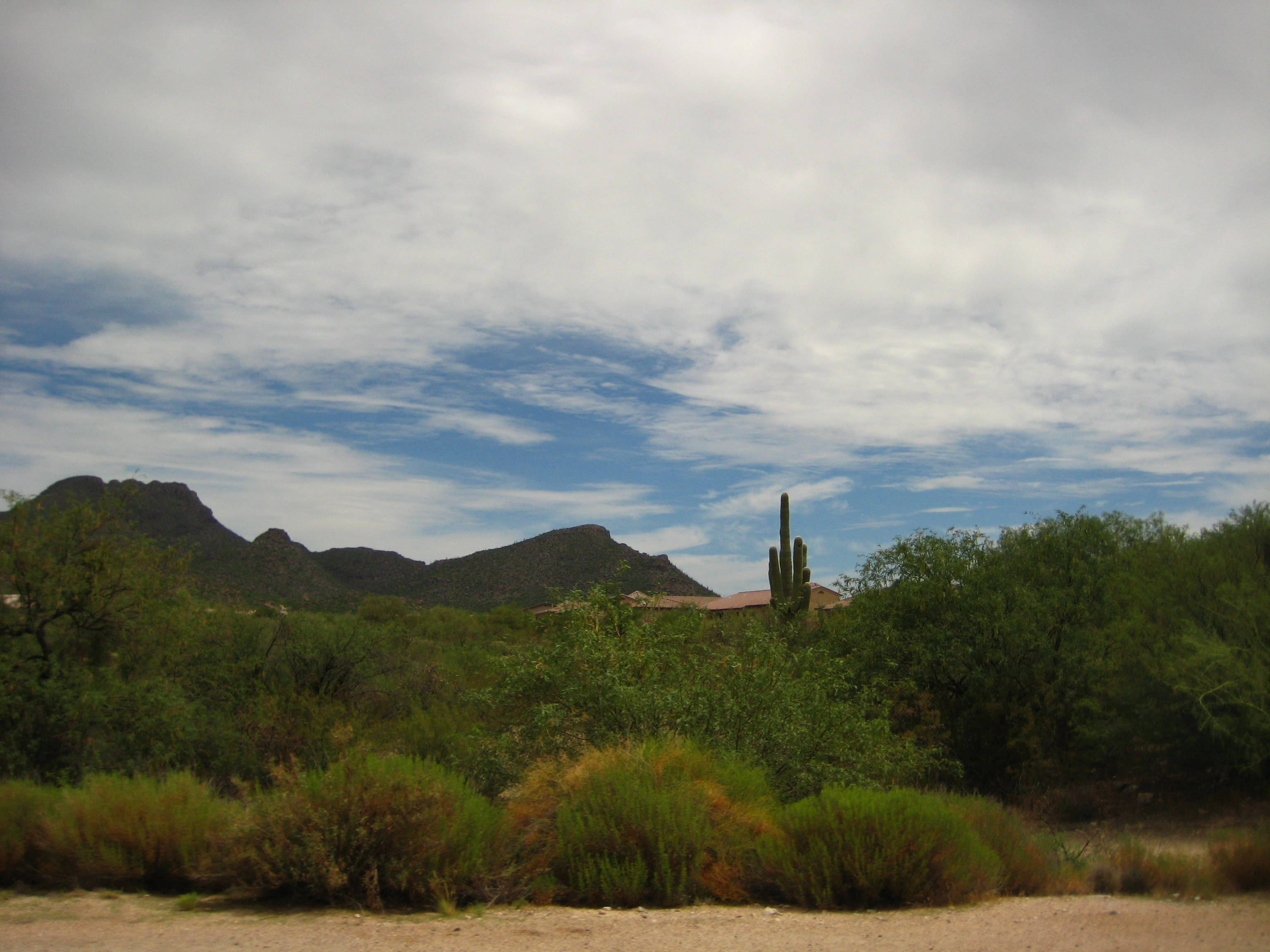 Bluffs at Dove Mountain Marana
