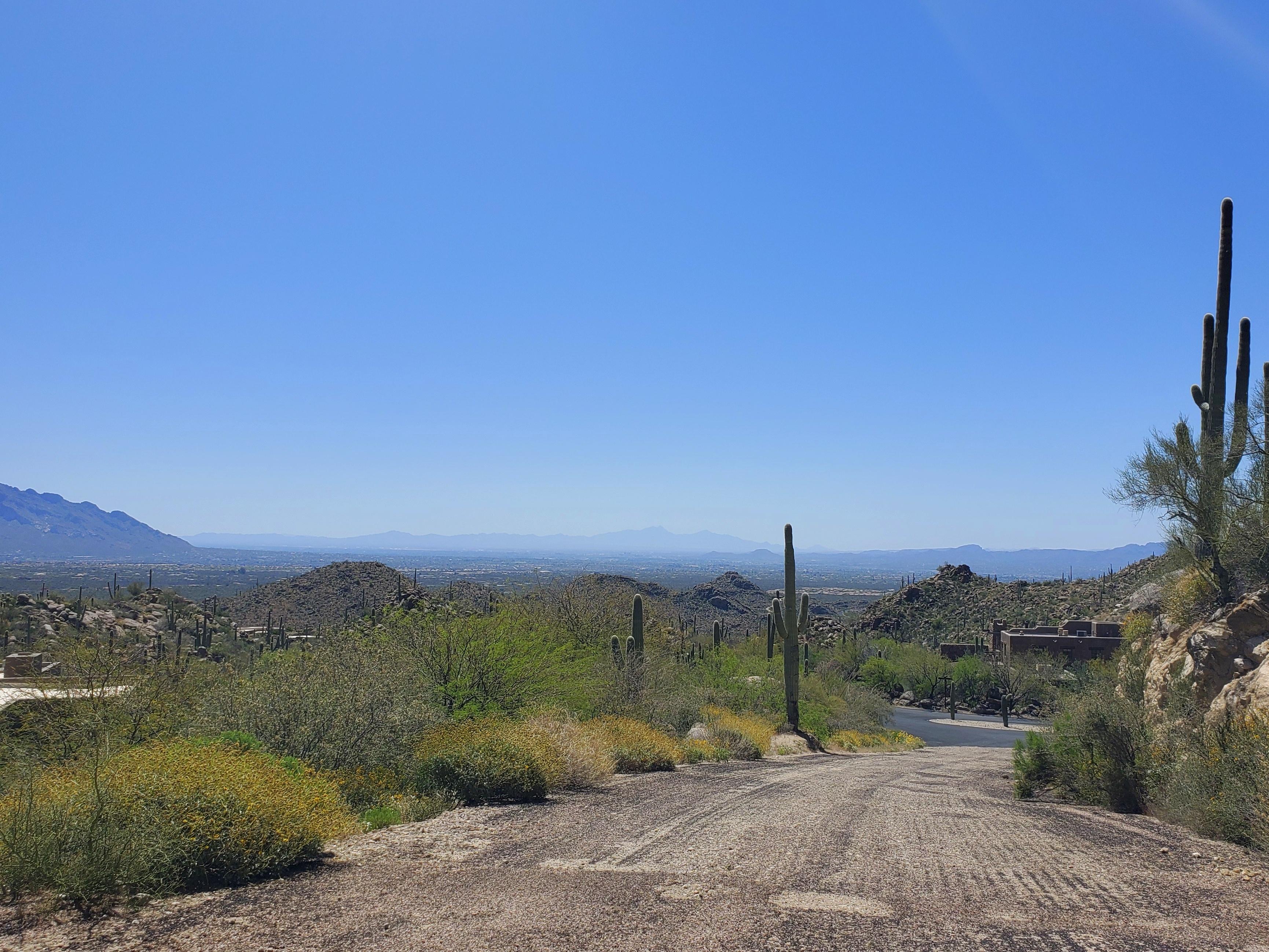 Saguaro Ranch McClintocks Luxury Living