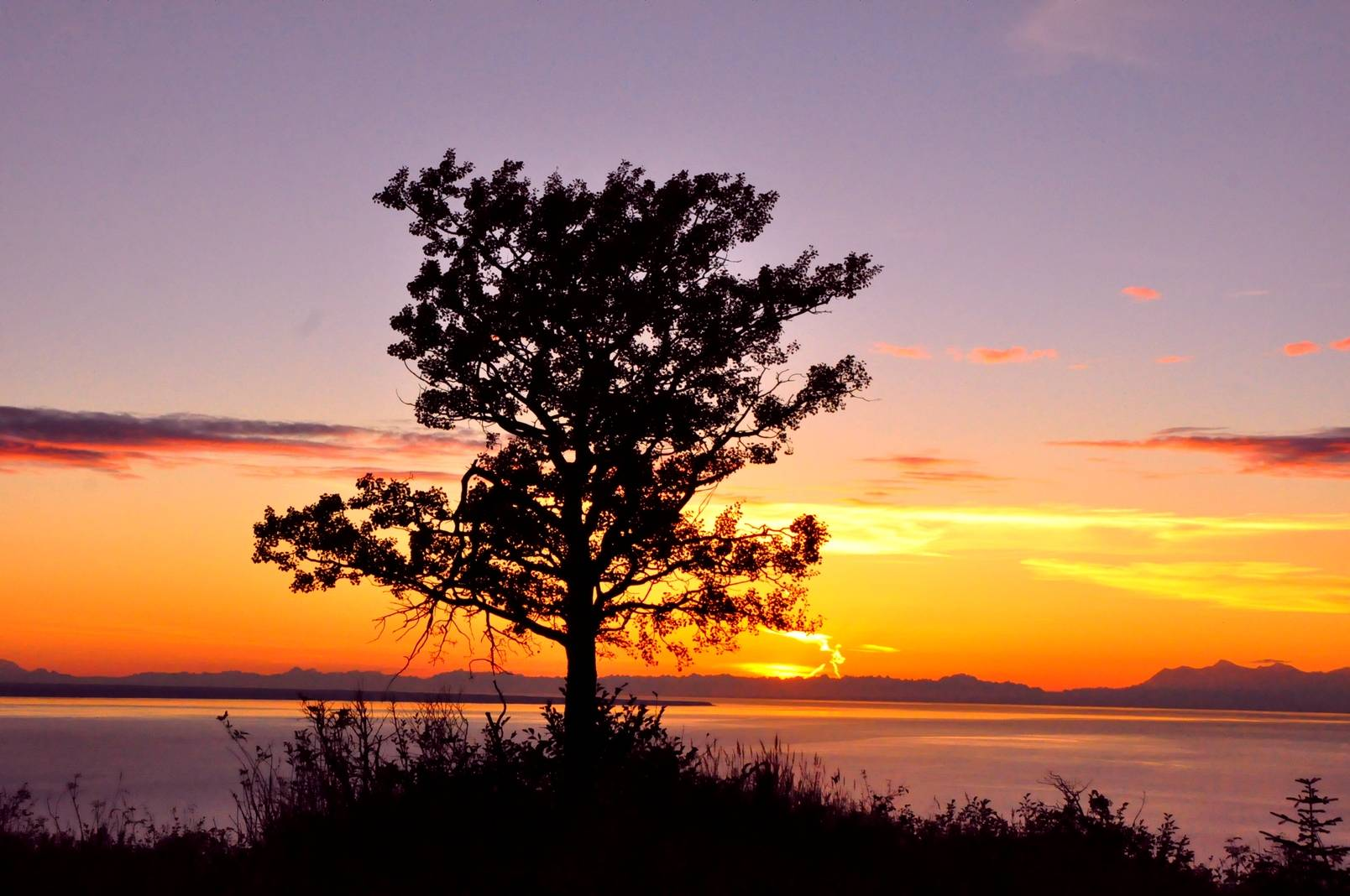 Anchorage Alaska by Robert Swetz 2014