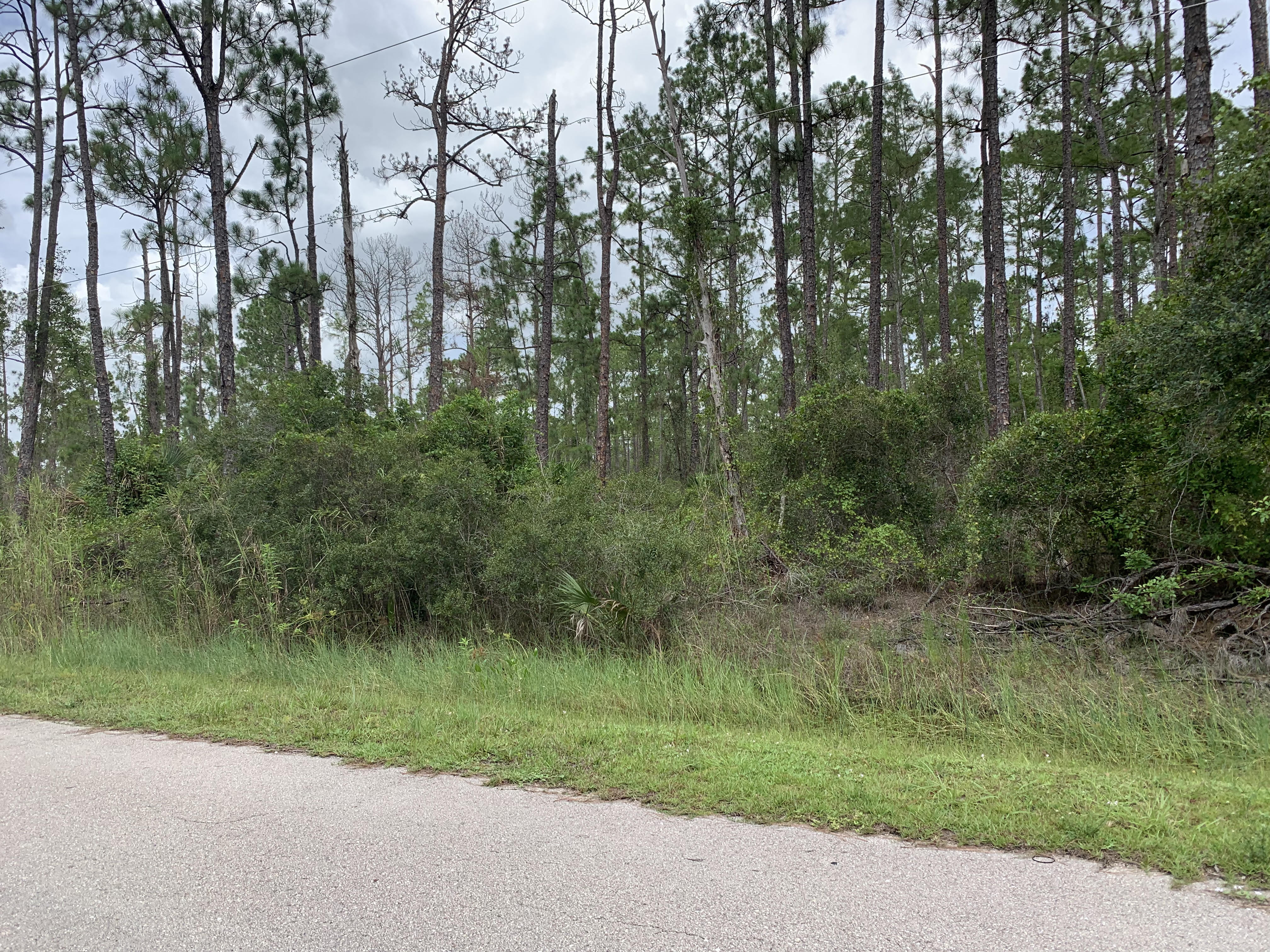 lot in lehigh acres for sale