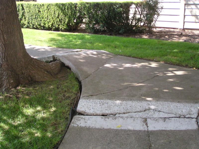 Concrete Sidewalk Grinding : Grinding those concrete trip hazards is only a temporary fix