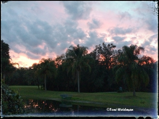 Sunset in Timber Greens, New Port Richey, FL
