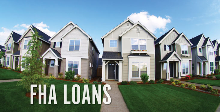 how to avoid fha loan mortgage insurance