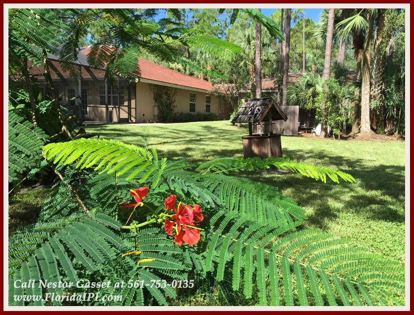 Equestrian Homes For Sale in Fox Trail Loxahatchee FL - 1154 Clydesdale Dr Loxahatchee FL 33470 - Backyard