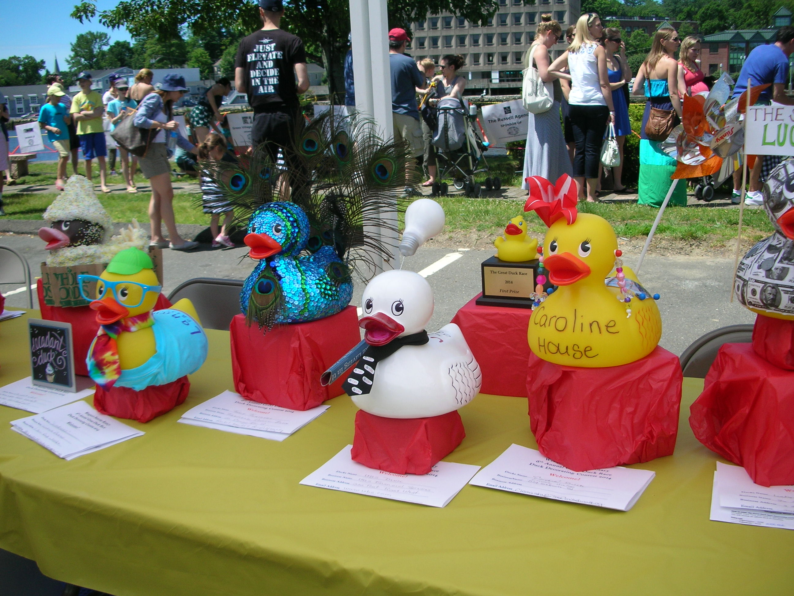 Decorated Duck entries