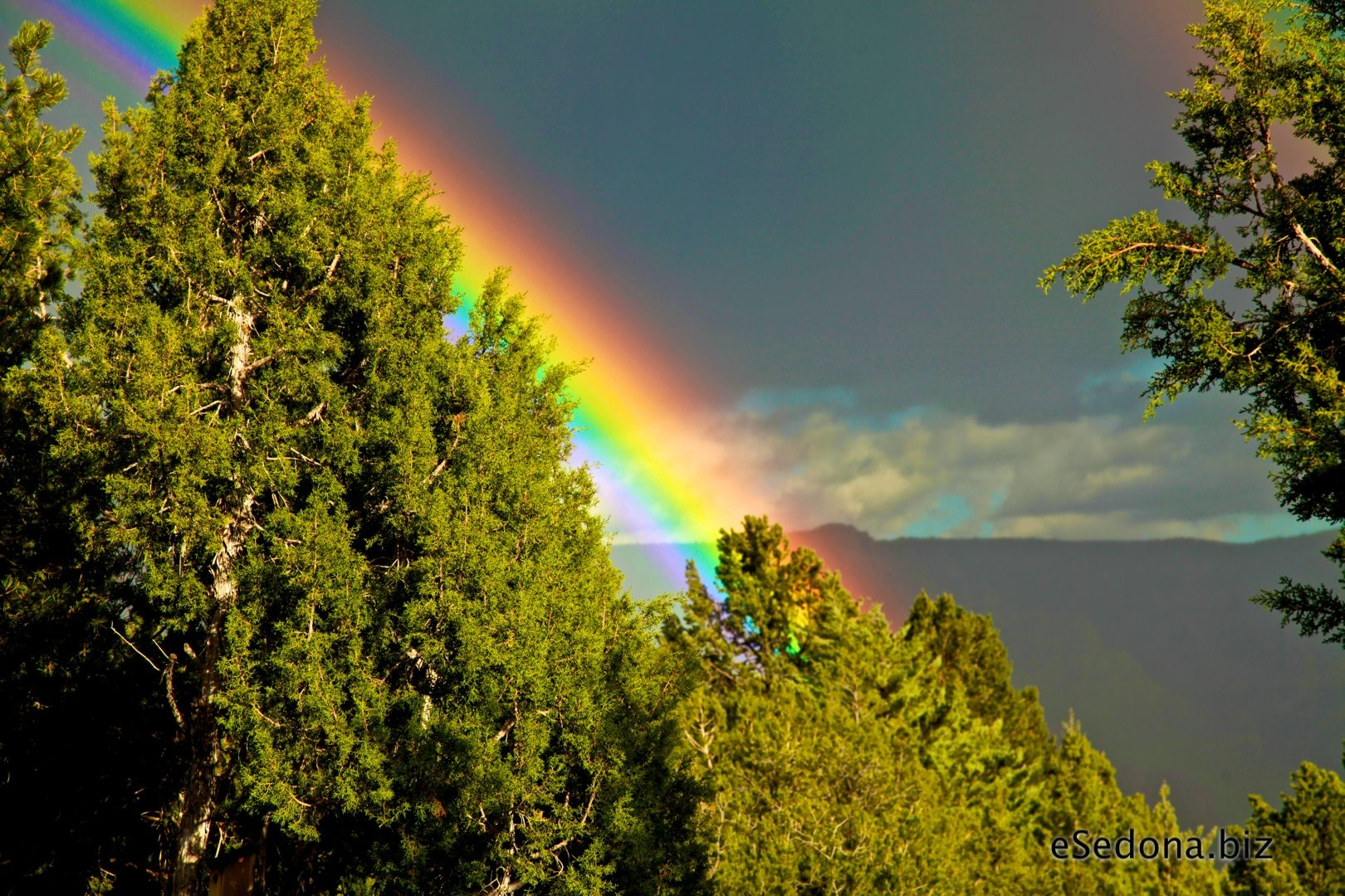 essay about rainbow Rainbow : rainbow is a natural phenomenon that happens after rain rainbow consists of seven colors the colors together form a thick band which makes it beautiful the seven colors of rainbow are: violet, indigo, blue, green, yellow, orange and red.