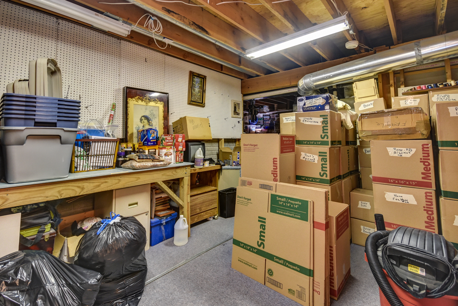 Basement Storage Area